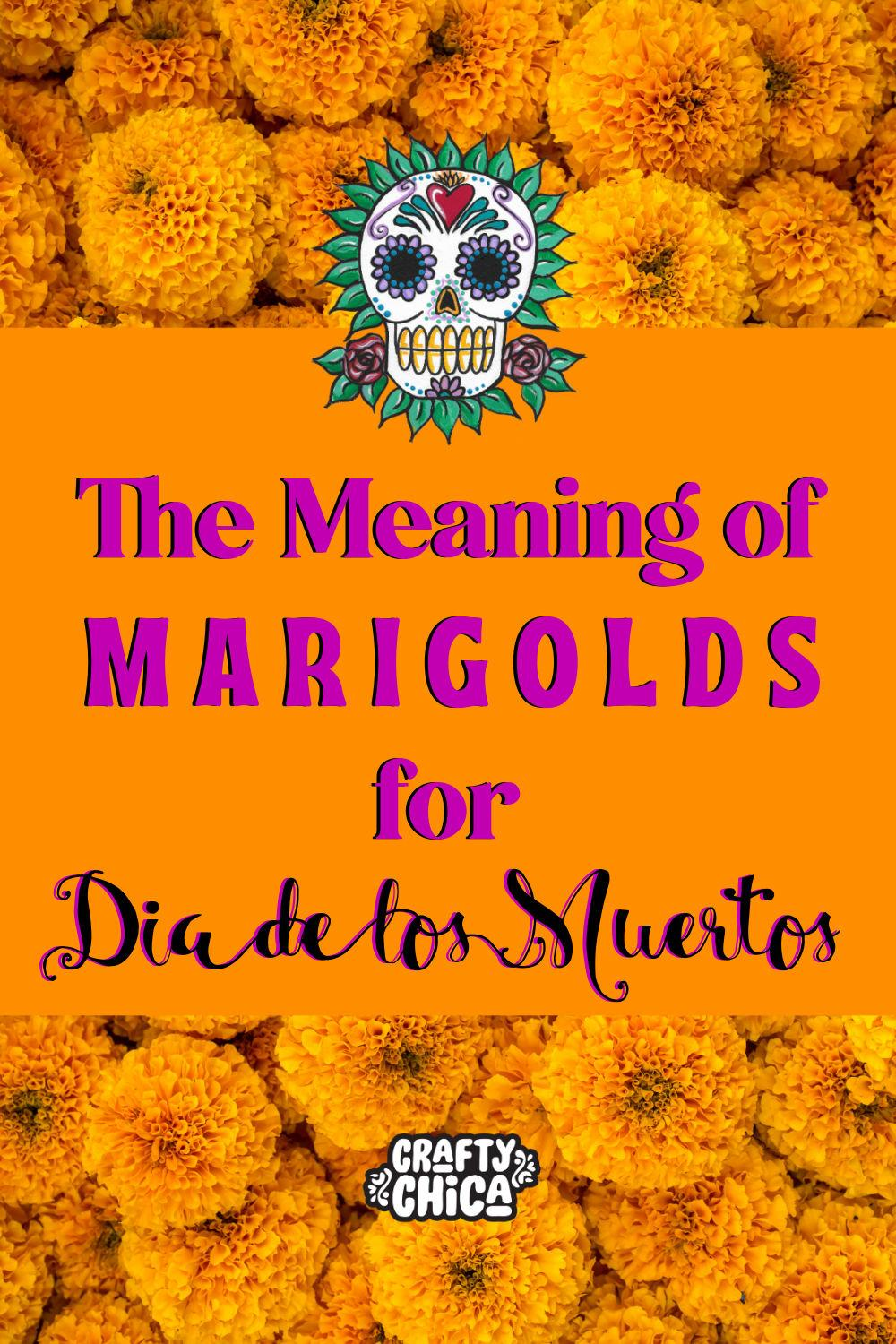 Meaning of Marigolds for Dia de Los Muertos #craftychica #marigolds