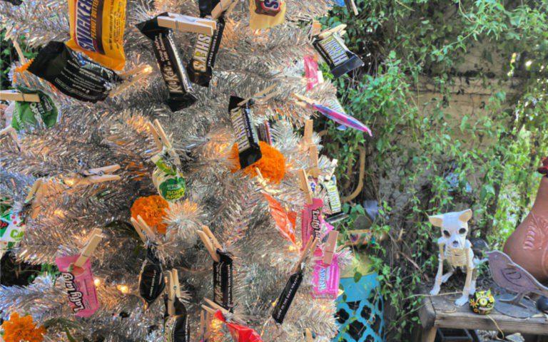 Candy Halloween Tree #candytree #halloweentree