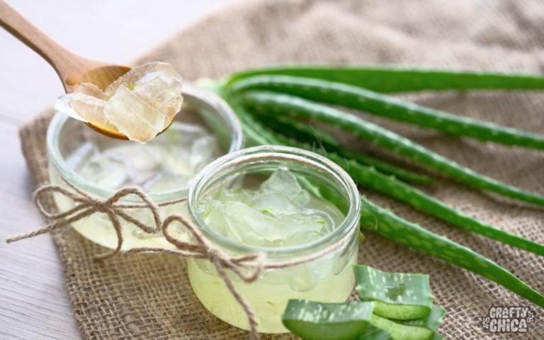 Five reasons to love aloe vera